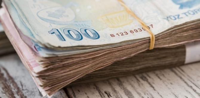 Hükümetten Vatandaşlara Büyük Müjde. 3 Bin Lira Maaş Verecekler