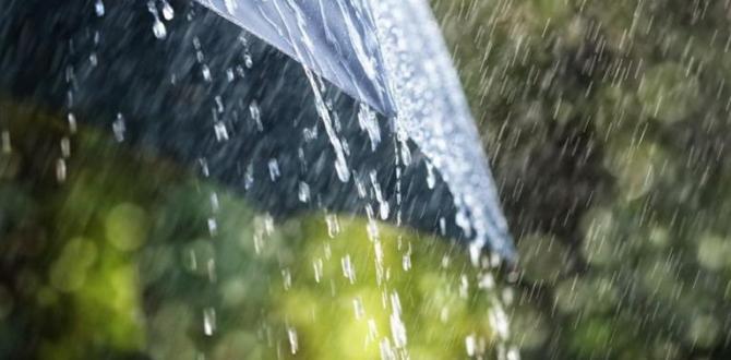 Meteoroloji'den 4 il için için şiddetli yağış uyarısı!